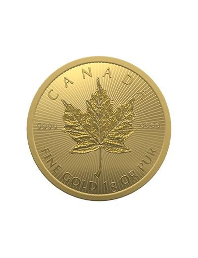 Liść Klonowy 1 gram złota