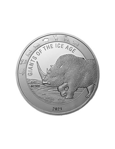 Nosorożec Włochaty 2021