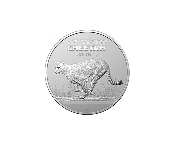 Australijskie ZOO Gepard