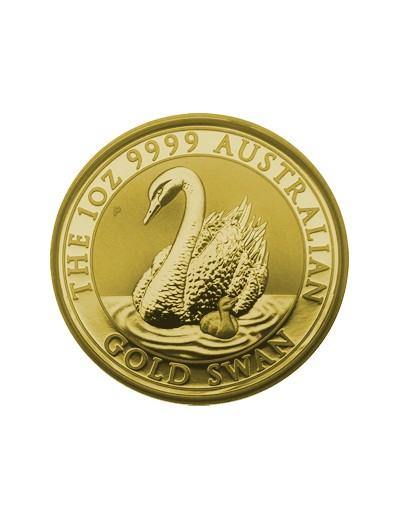 Australijski Łabędź 2018 1...