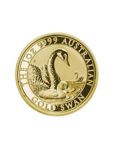 Australijski Łabędź 2019 1...