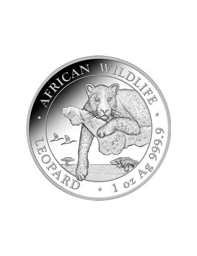 Leopard Somalijski 2020 1...